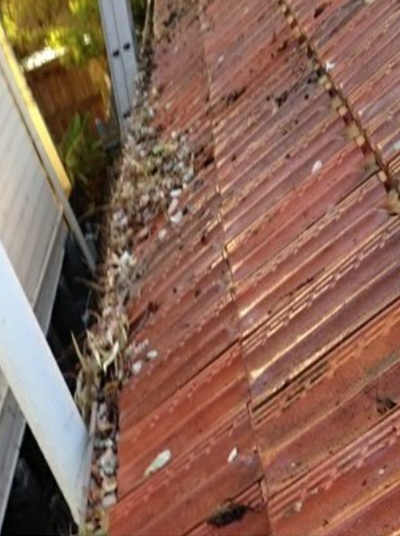 Home Gutter Cleaning Before