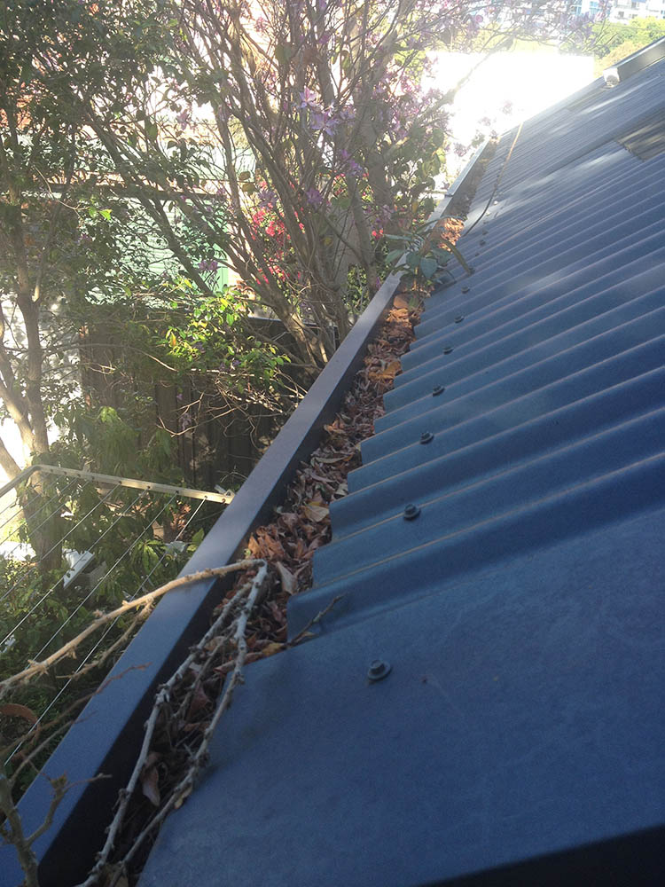 Reasons to Remove Leaves & Clogging from Your Home's Gutters
