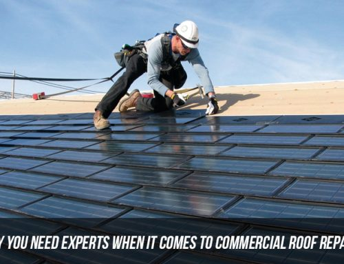 Why You Need Experts When It Comes To Commercial Roof Repairs